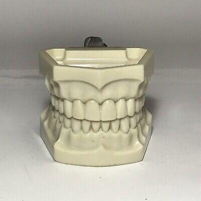 Columbia Dentoform