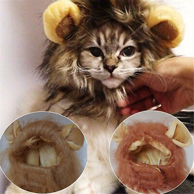 Pelzig Haustier Hut Kostüm Süß Löwe Perücke für Katze Halloween XMAS (Süße Katze Kostüme Für Halloween)
