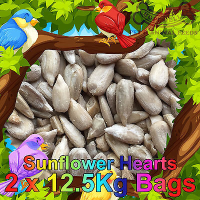 25KG Sunflower Hearts Bakery Grade Dehulled Kernels for Wild Bird Food 2x12.55Kg