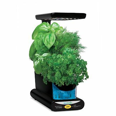 AeroGarden Sprout with Gourmet Herb Seed Pod Kit, Black