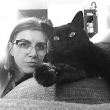 Artist and Cat seeking sharehouse for 6 months! Yokine Stirling Area Preview