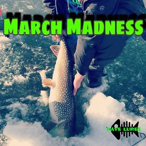 Ice Fishing Rigs (Barbless) - Nipawin area and more