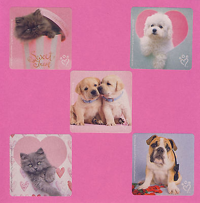 Valentines Party Favors (15 Rachael Hale Cats and Dogs Valentine's Day - Large Stickers - Party)