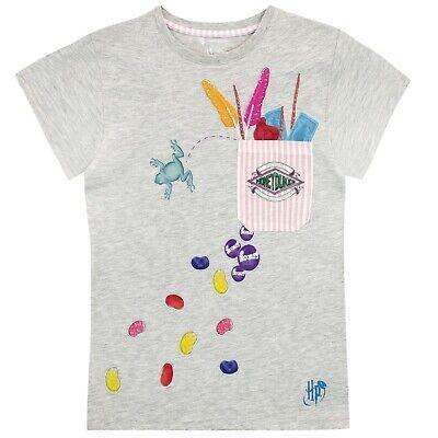 Harry Potter T-Shirt I Kids Harry Potter Top I Harry Potter Honeydukes Tee