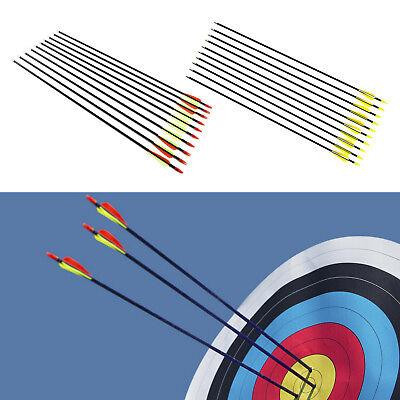 10 Pcs Fibreglass 31  Inch Archery Arrows Hunter Arrow Target   Field Practice
