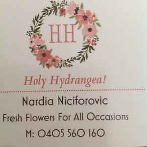 Holy Hydrangea! Florist Marsfield Ryde Area Preview