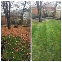 Spring Clean Up/Tree and Shrub Removal/Lawn & Garden Maintenance
