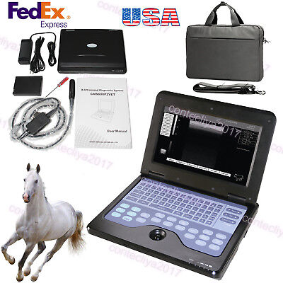 Veterinary Bovineequine Ultrasound Scanner Portable Laptop Machine Rectal Probe