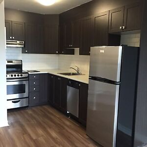 MODERN ONE BDRM IN NEPEAN/KANATA AREA FOR APRIL!!