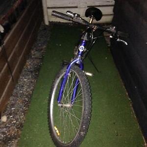 De Ville Moutain Bike New Tires! Ringwood Maroondah Area Preview