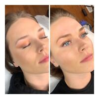 Microblading, Powder/Ombré Brows, Combo Brows, Training