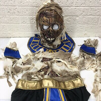 Egyptian Mummy Pharaoh's Revenge Kids Costume Halloween M 8-10 King Tut Cosplay