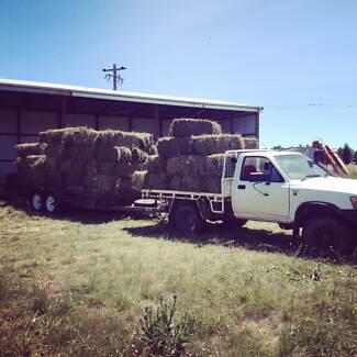First cut Lucerne Hay Cooma 2630 Cooma-Monaro Area Preview