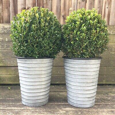 Set 2 Vintage Style Grey Zinc Galvanised Metal Garden Planters Flower Pots Tubs