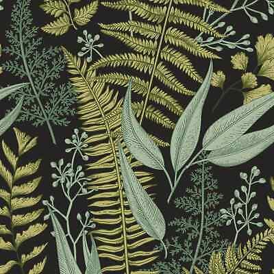 Ferns Botanical Wallpaper Wallpaper