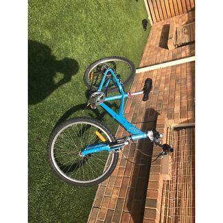 Giant mountain bike. Gawler Gawler Area Preview