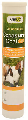 Animax Copasure Kid Goats Copper Supplement 2g 24 Capsules