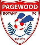 Pagewood FC Seek Senior Football Players in Eastern Suburbs Comp. Pagewood Botany Bay Area Preview