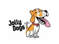 Jolly Dogs - Professional dog walking
