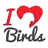Offering Loving experienced home to birds you can no longer care