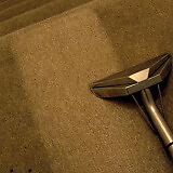 1 room carpet cleaning in Croydon area