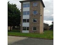 2 bedroom house in 214 Broomlee Close, Newton Aycliffe