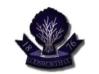 Lodsworth Cricket Club is looking for new players