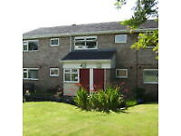 Studio flat in Fairweather Court Padiham BB12 8QB