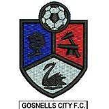 FOOTBALL (SOCCER) PLAYERS WANTED FOR LADIES TEAM 2016 Gosnells Gosnells Area Preview