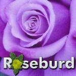 2014roseburd