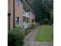 Studio flat in Green Hill Way, Shirley, Solihull, B90 3PW