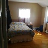 beautiful 4/3 bedroom house in west end halifax available from s