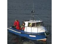 20 ft GRP Fishing Boat for Sale