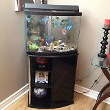 29 gal bow front aquarium with stand