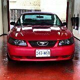 2004 Ford Mustang Great Condition