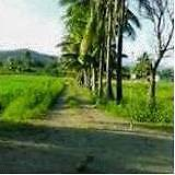 House and Land package sale in FIJI