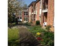 Studio flat in Devonshire Court, Wheeldon Crescent, Brimington, Chesterfield S43 1AR, UK