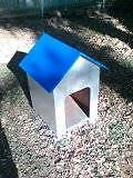 dog house for sale will suit a small dog Rochedale South Brisbane South East Preview