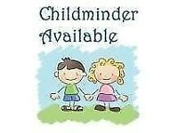 Childminder/ Nanny 30 years experience
