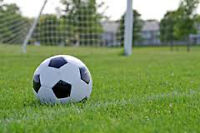 Co-ed Soccer team looking for players & goalie.