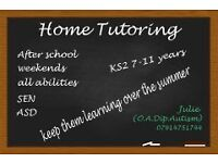 Home Tuition KS2 (7 - 11 years)