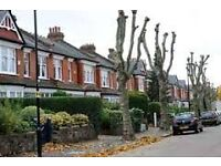 beautiful 2 bedroom muswell hill available now must see