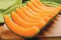 Fresh Cantaloupes and Honeydew Melons