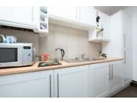 Beautifully Renovated One Double Bed, Separate Kitchen, Separate Lounge Only For £899.99!