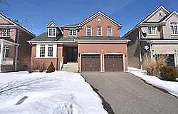 Fully Upgraded 4+1/5,Fin Basement With WR,No Carpet,Top Location
