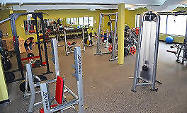 PERSONAL TRAINING – gym setting or in-home Kitchener / Waterloo Kitchener Area image 2
