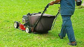 Lawn Mowing, Edging, Hedging Lane Cove Lane Cove Area Preview