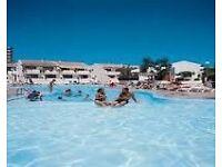 Apartment Rental - 1 Bed - Garden City San Eugenio Adeje Tenerife