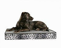 All Dog Beds On Sale (My Precious Paws)