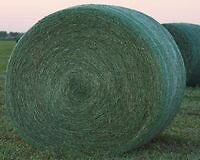 4 x 4 Round Bales Hay for 2016